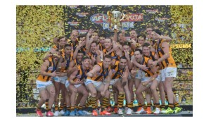 Hawthorn football club celebrating their 2015 grand final win (click to enlarge or to source, then back-arrow to return to blog).