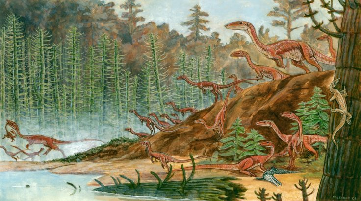 This image has an empty alt attribute; its file name is BEST-coelophysis.jpg